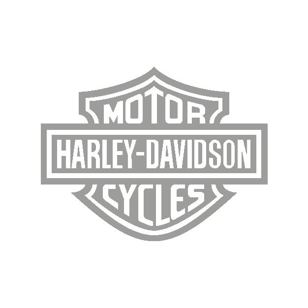 HarleyDavidson